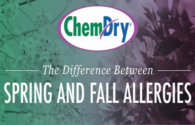 Difference Between Spring and Fall Allergies