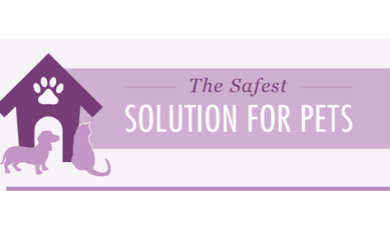 The Safest Solution for Pets