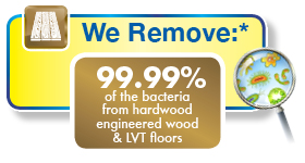 Wood Floor cleaning by Chem-Dry proven to remove 99.99% of viruses, bacteria and germs