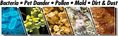 bacteria, pet dander, pollen mold and dirt lurk in your air ducts